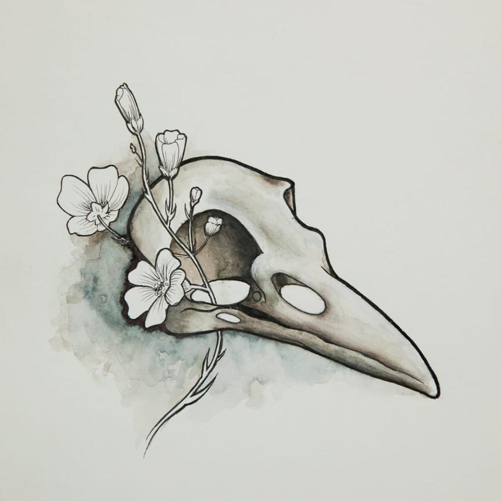 Bird skull painting