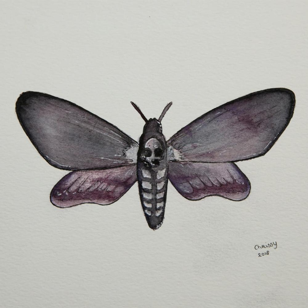 Deathhead Moth Purple painting